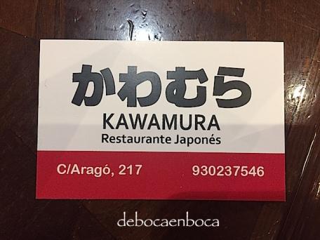 kawamura-2-copyright-debocaenboca